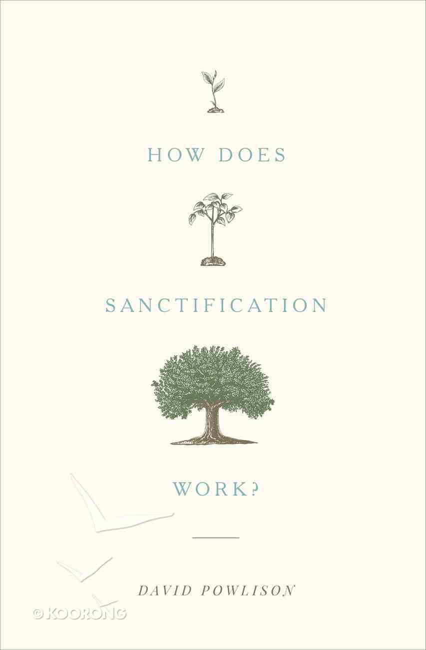 How Does Sanctification Work? Paperback