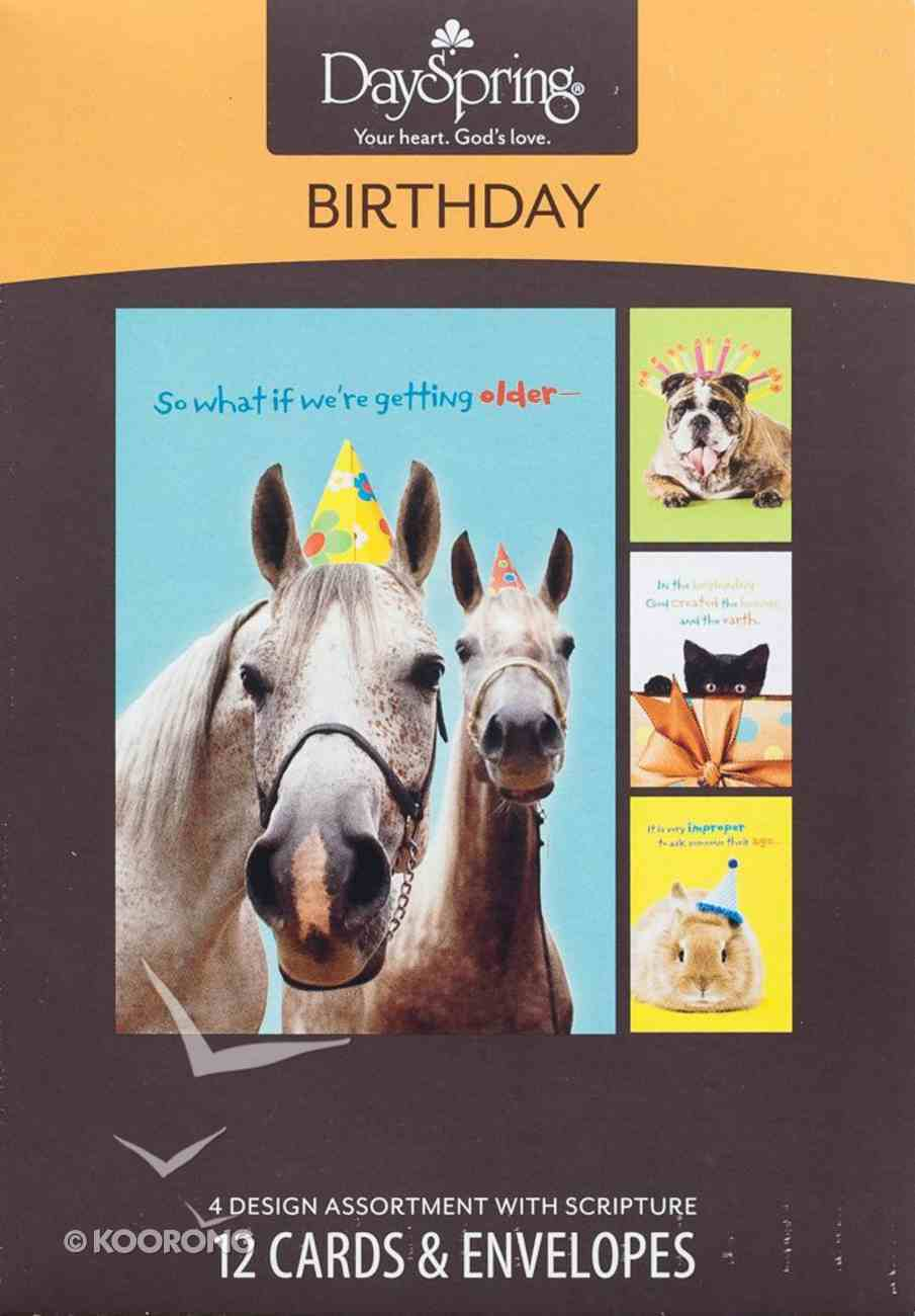Boxed Cards Birthday: Humor Pets Box