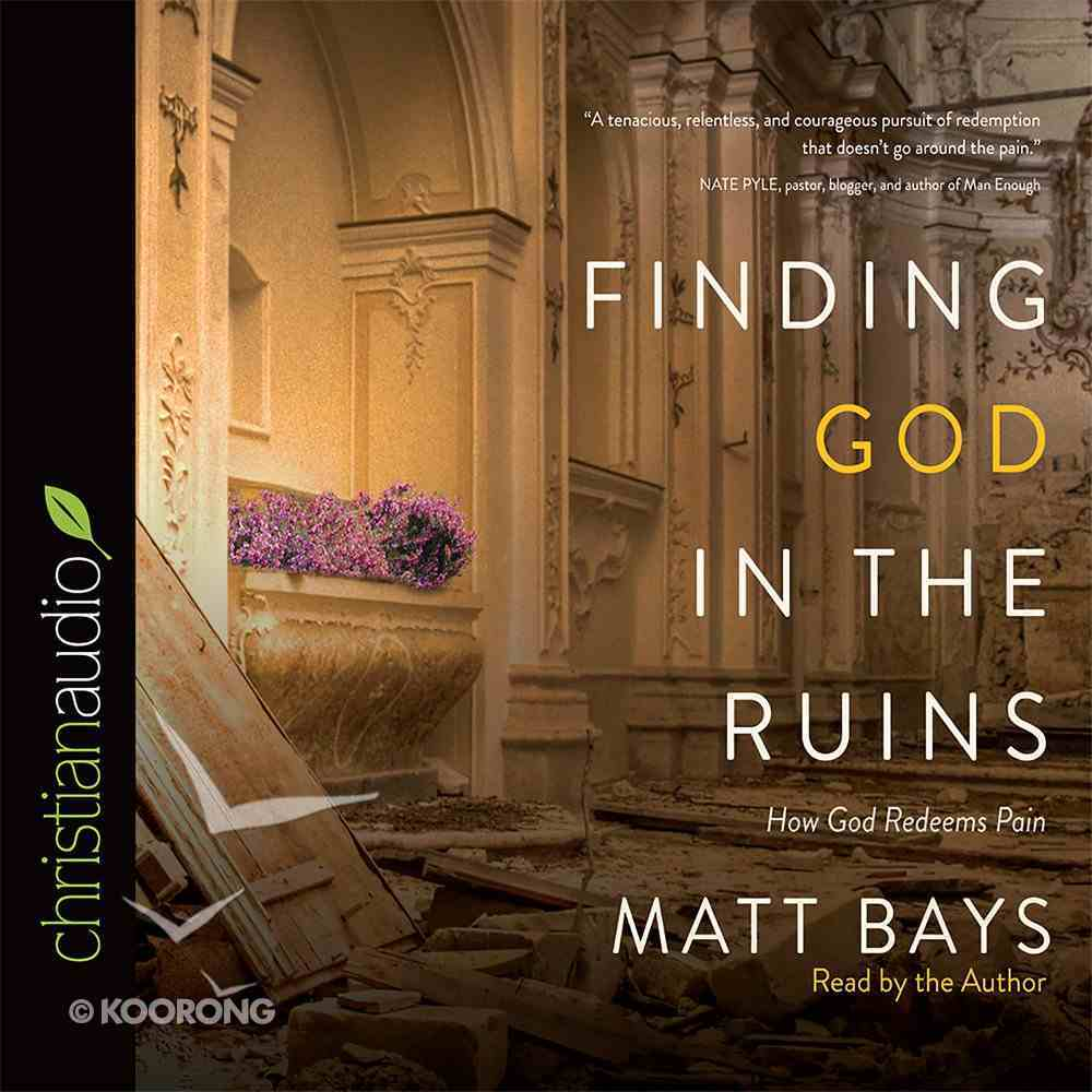 Finding God in the Ruins eAudio Book