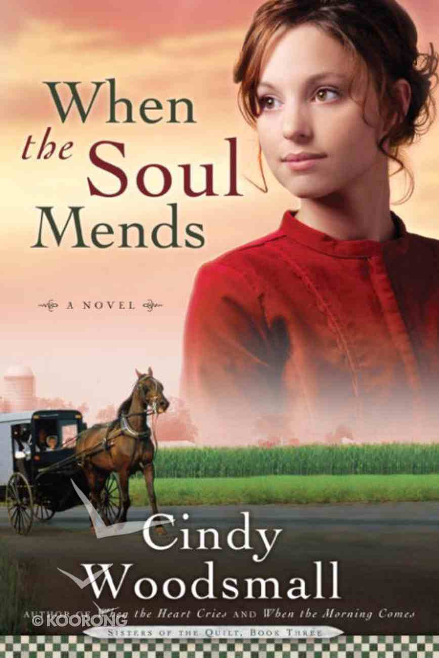 When the Soul Mends (#03 in Sisters Of The Quilt Series) eBook