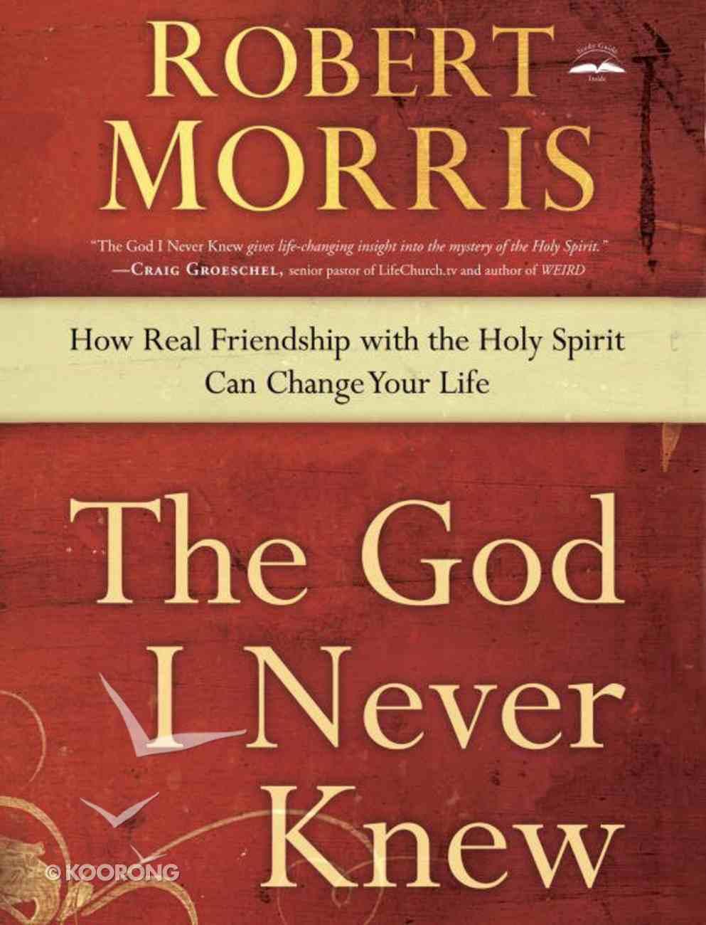 The God I Never Knew eBook
