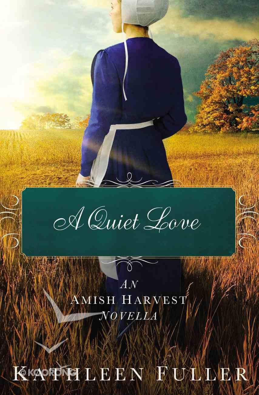 Amishhn: A Quiet Love eBook