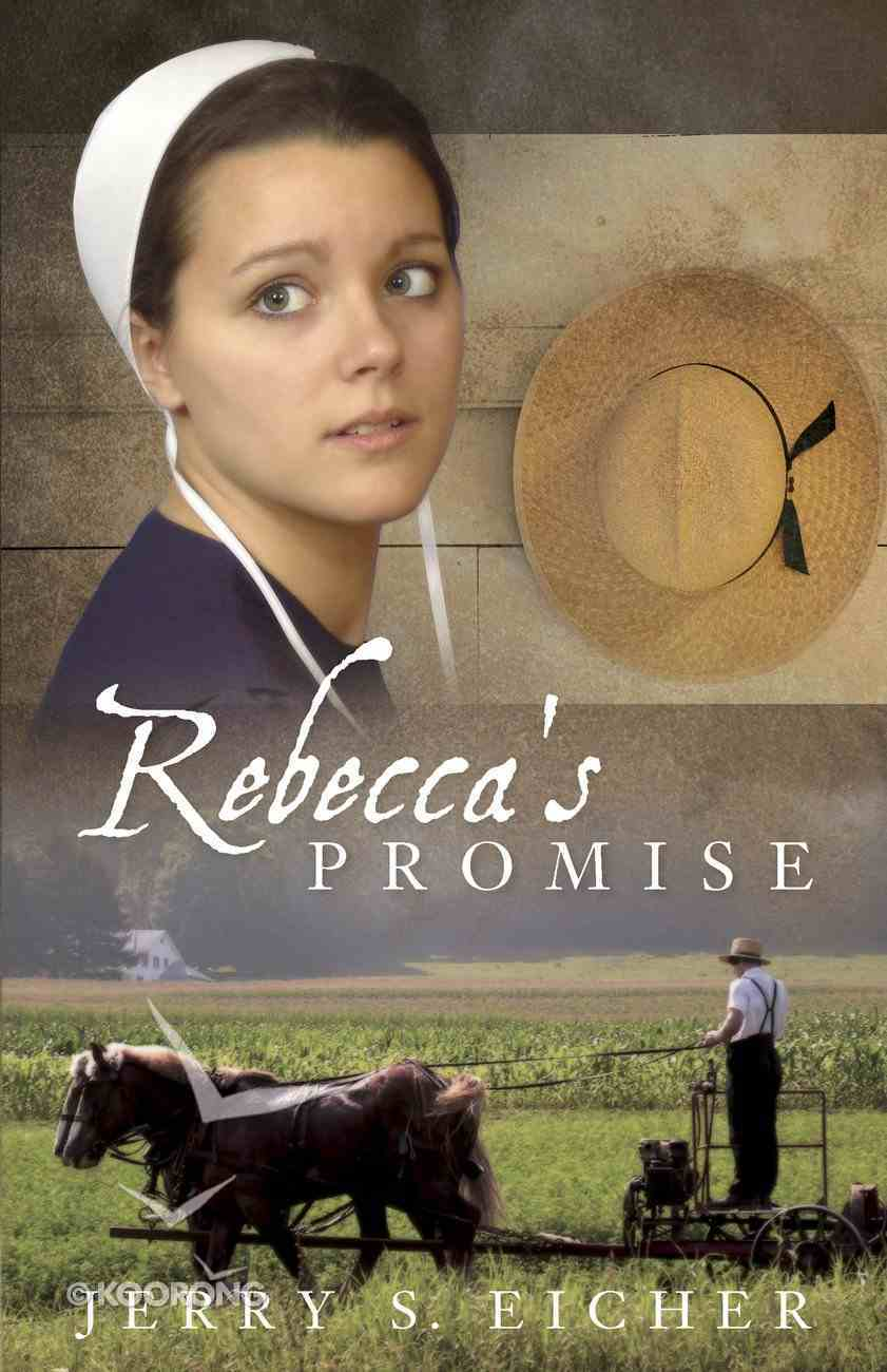Rebecca's Promise (#01 in Adams County Trilogy Series) eBook