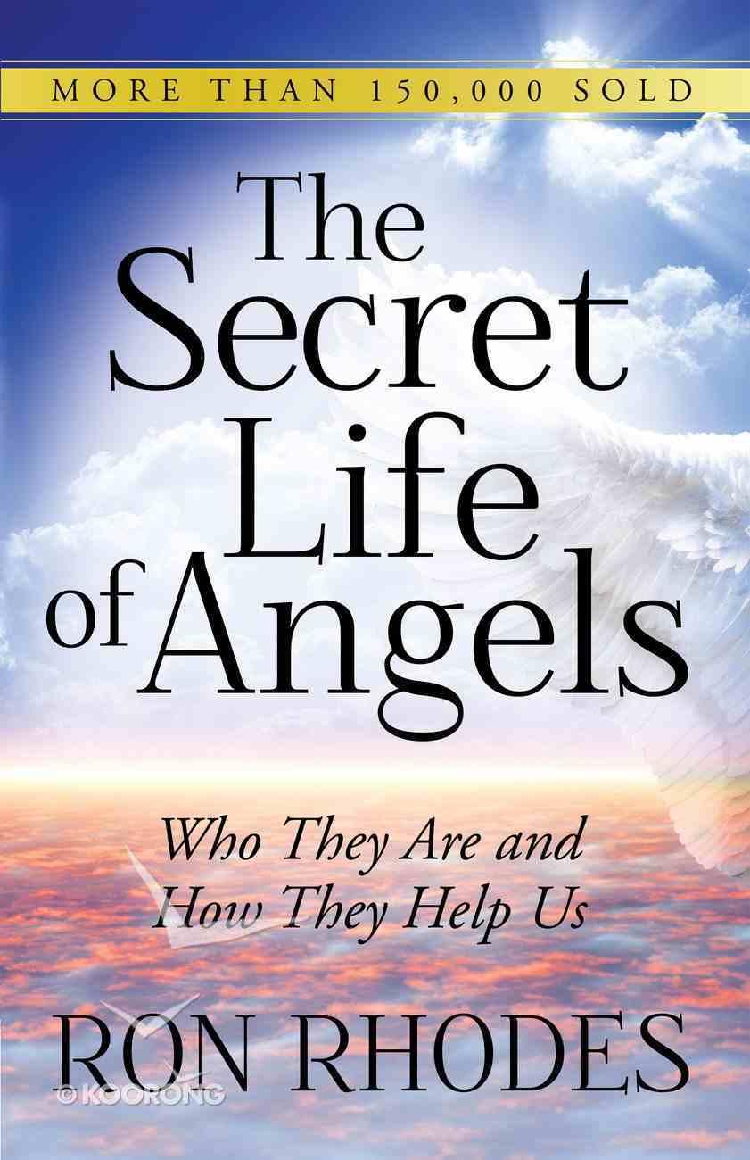 The Secret Life of Angels eBook