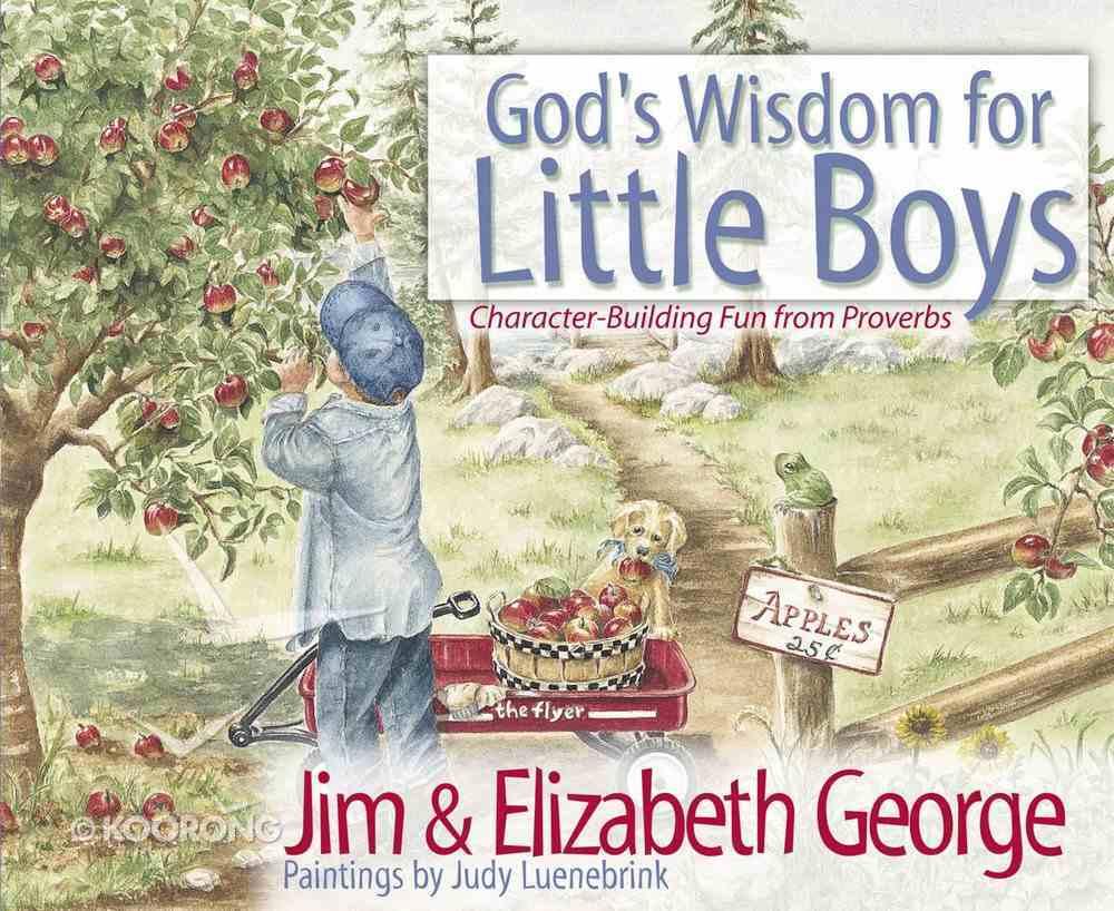 God's Wisdom For Little Boys eBook