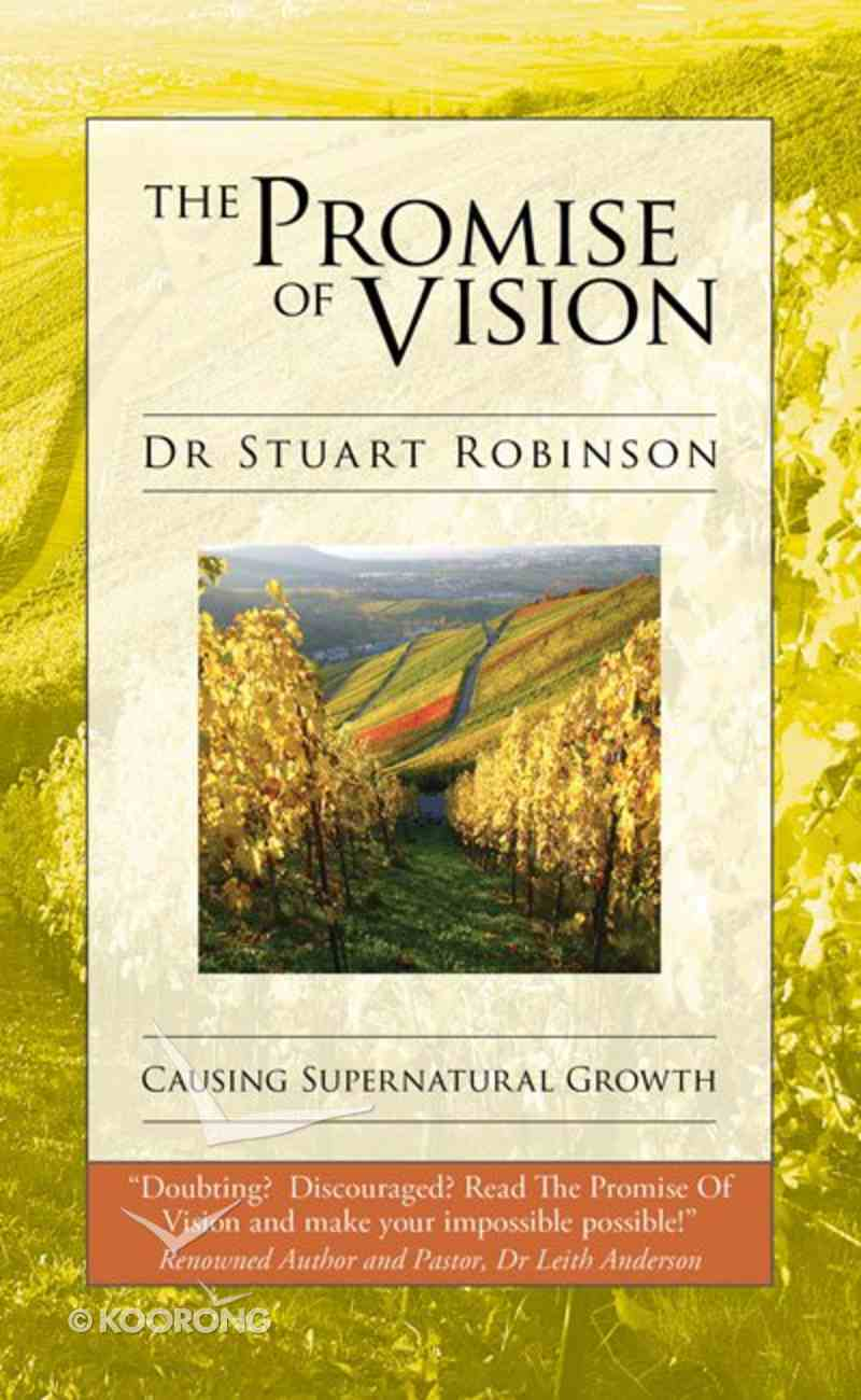 The Promise of Vision Paperback