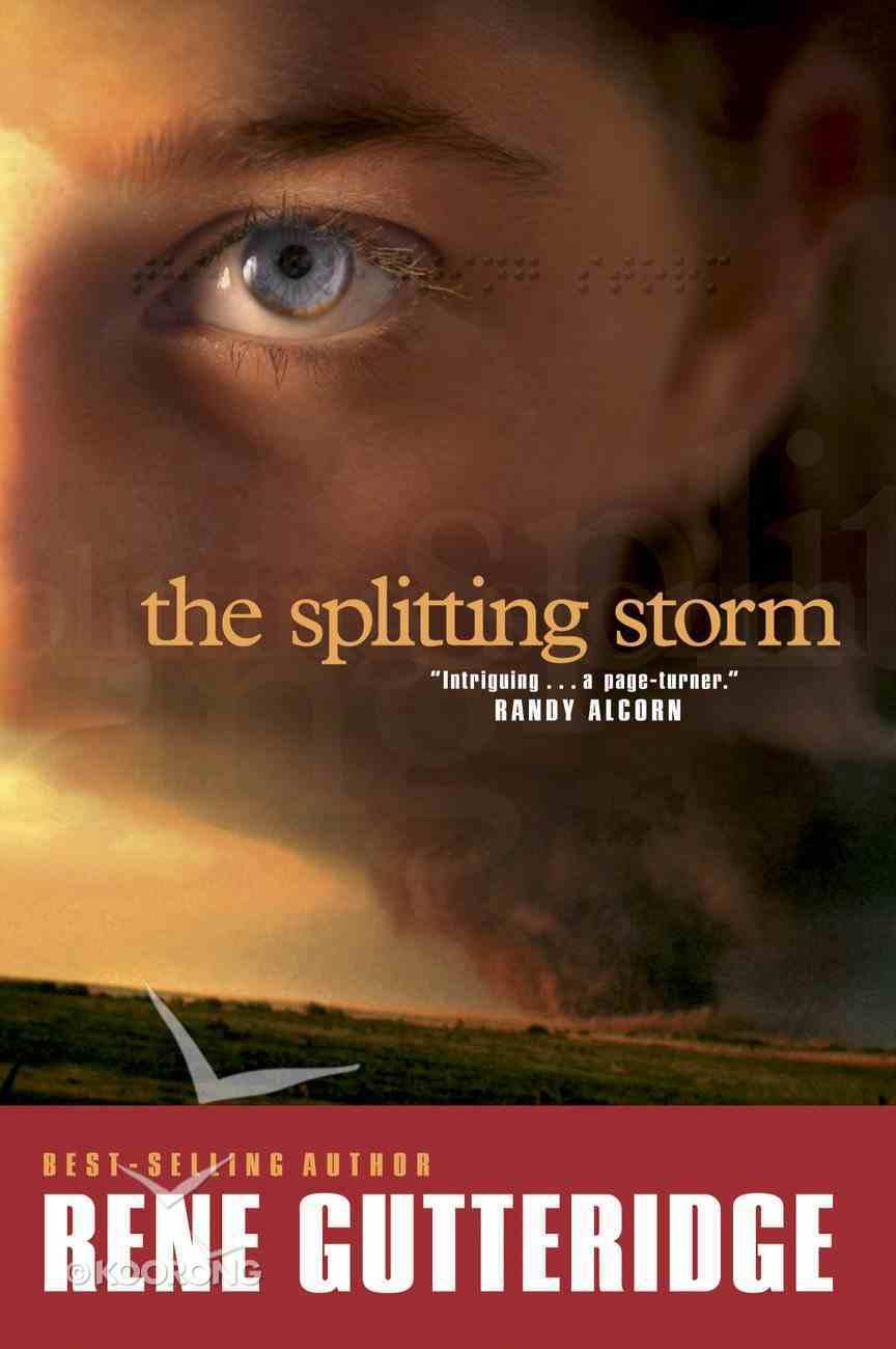 The Splitting Storm eBook