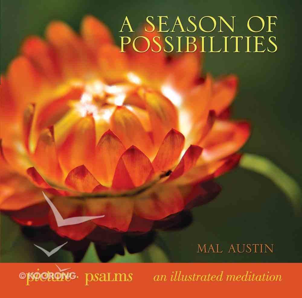 A Season of Possibilities eBook
