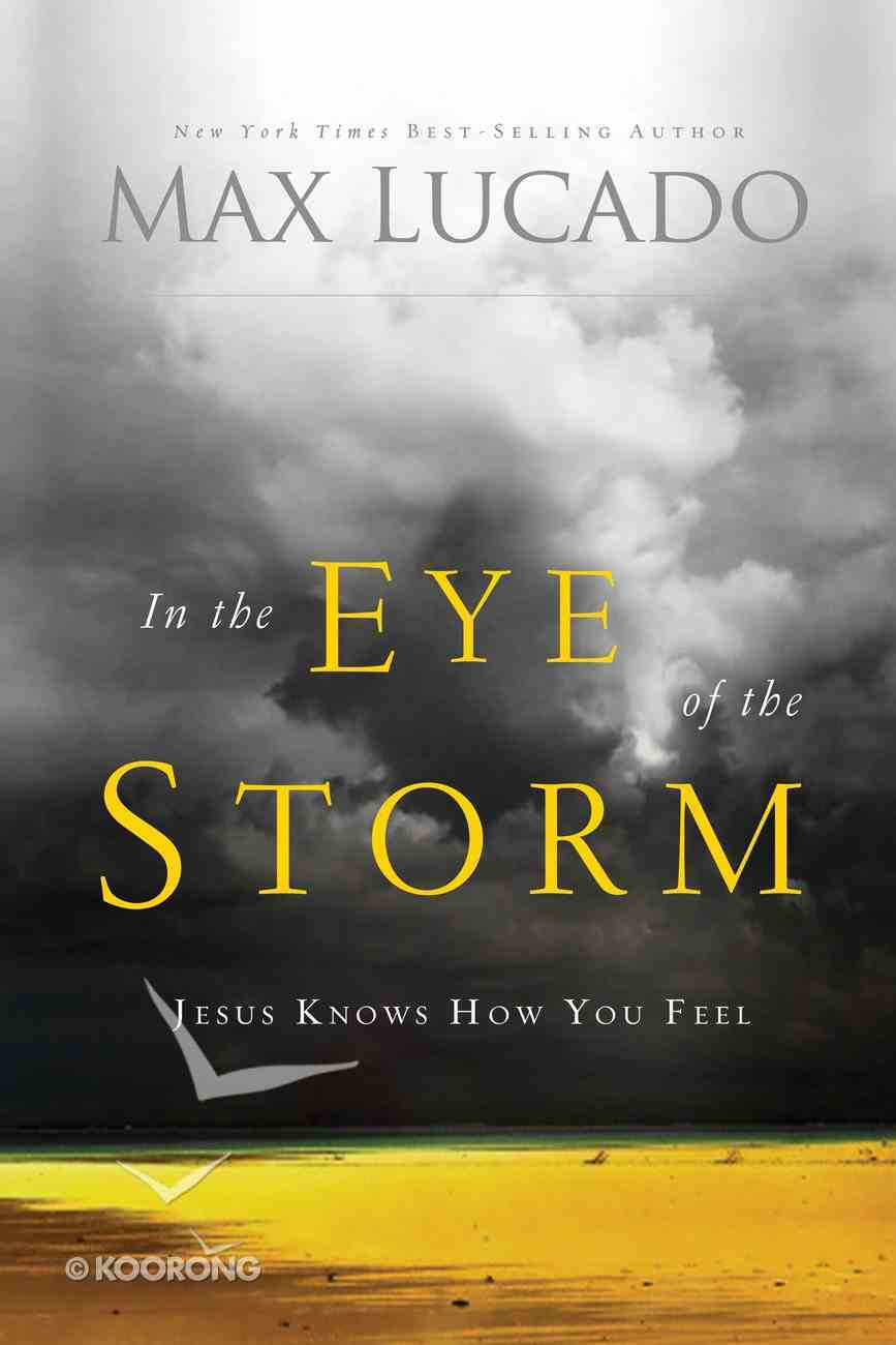 In the Eye of the Storm eBook