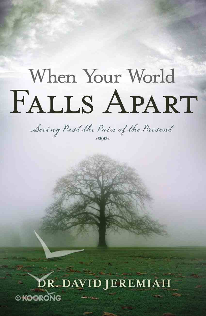 When Your World Falls Apart eBook
