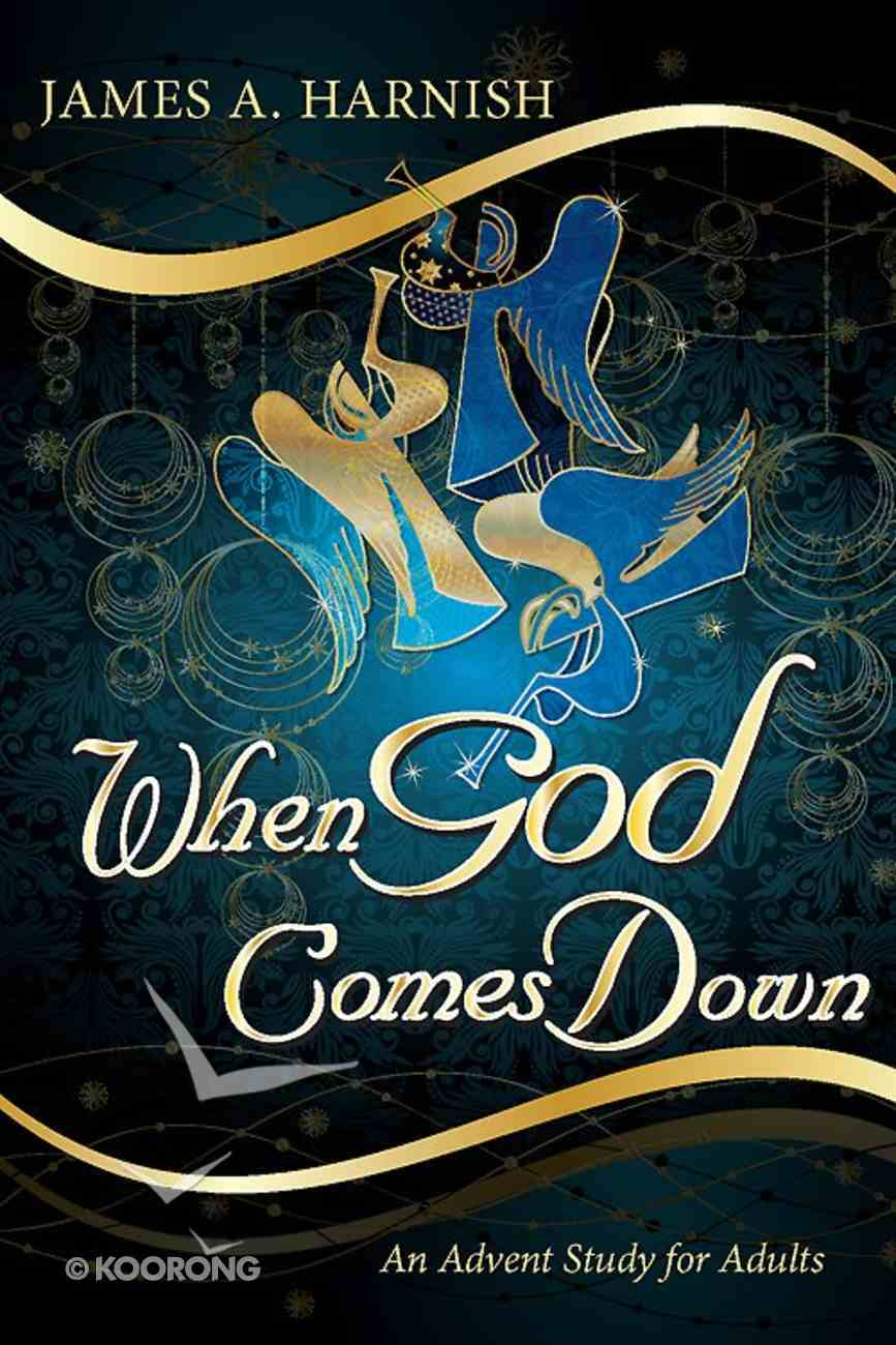 When God Comes Down (101 Questions About The Bible Kingstone Comics Series) eBook