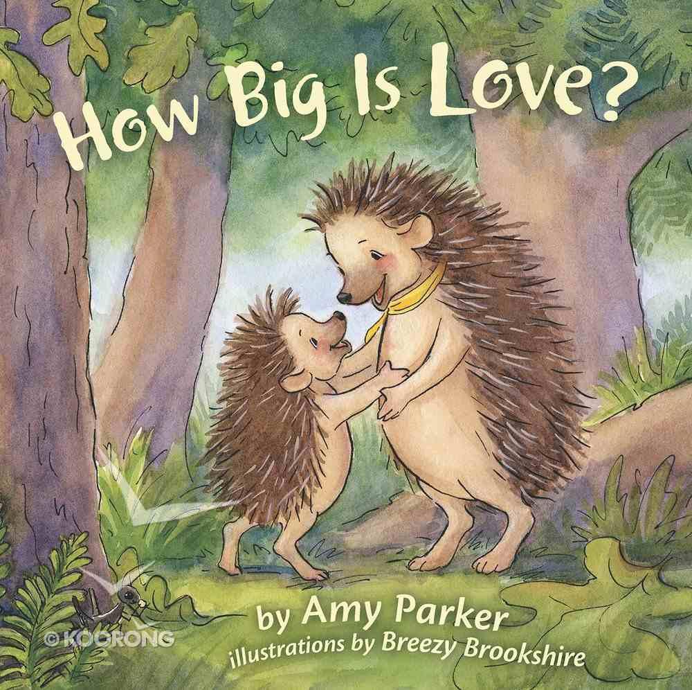 How Big is Love? eBook
