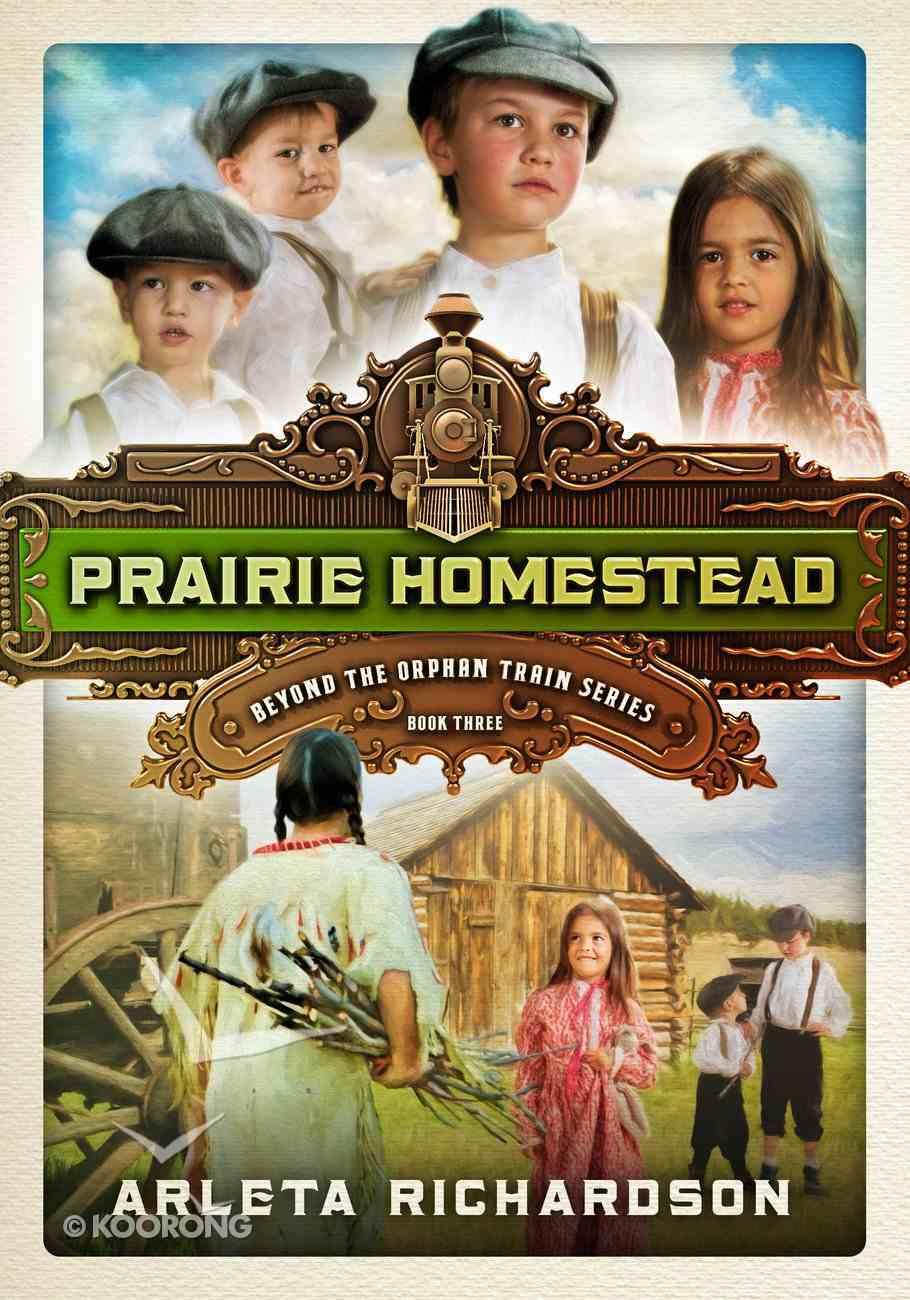 Prairie Homestead (#03 in Beyond The Orphan Train Series) eBook