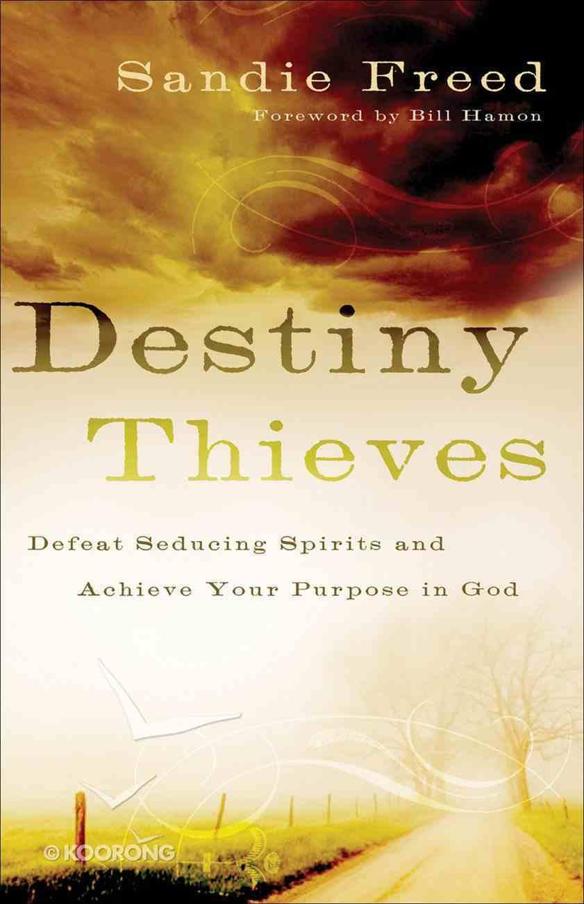 Destiny Thieves eBook
