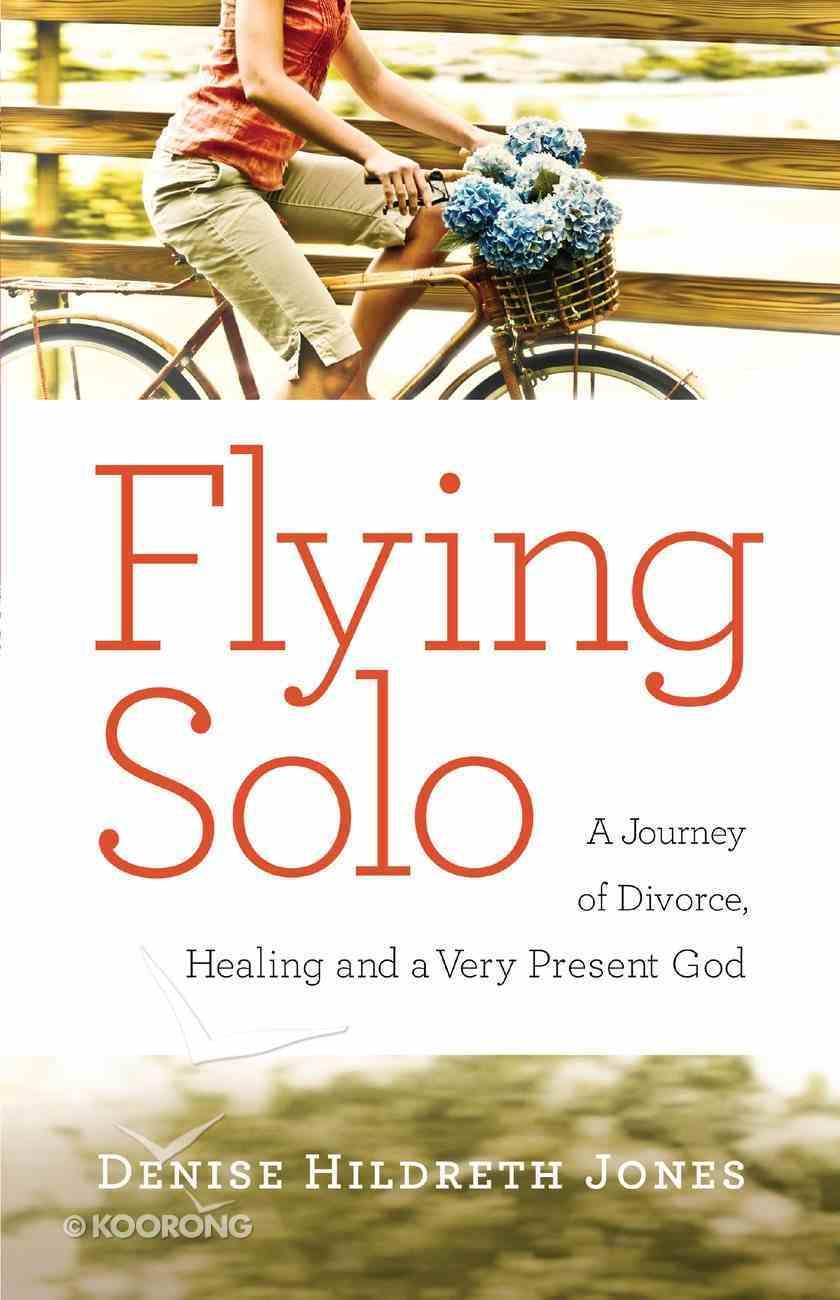Flying Solo eBook