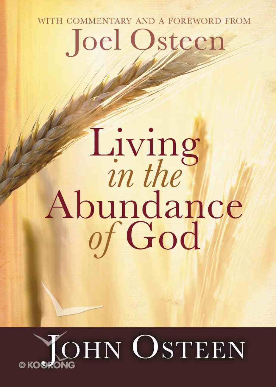 Living in the Abundance of God eBook