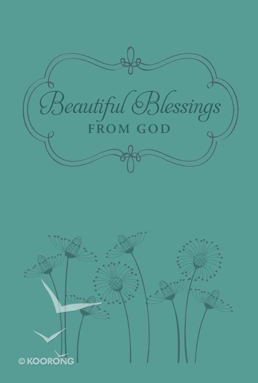 Beautiful Blessings From God eBook