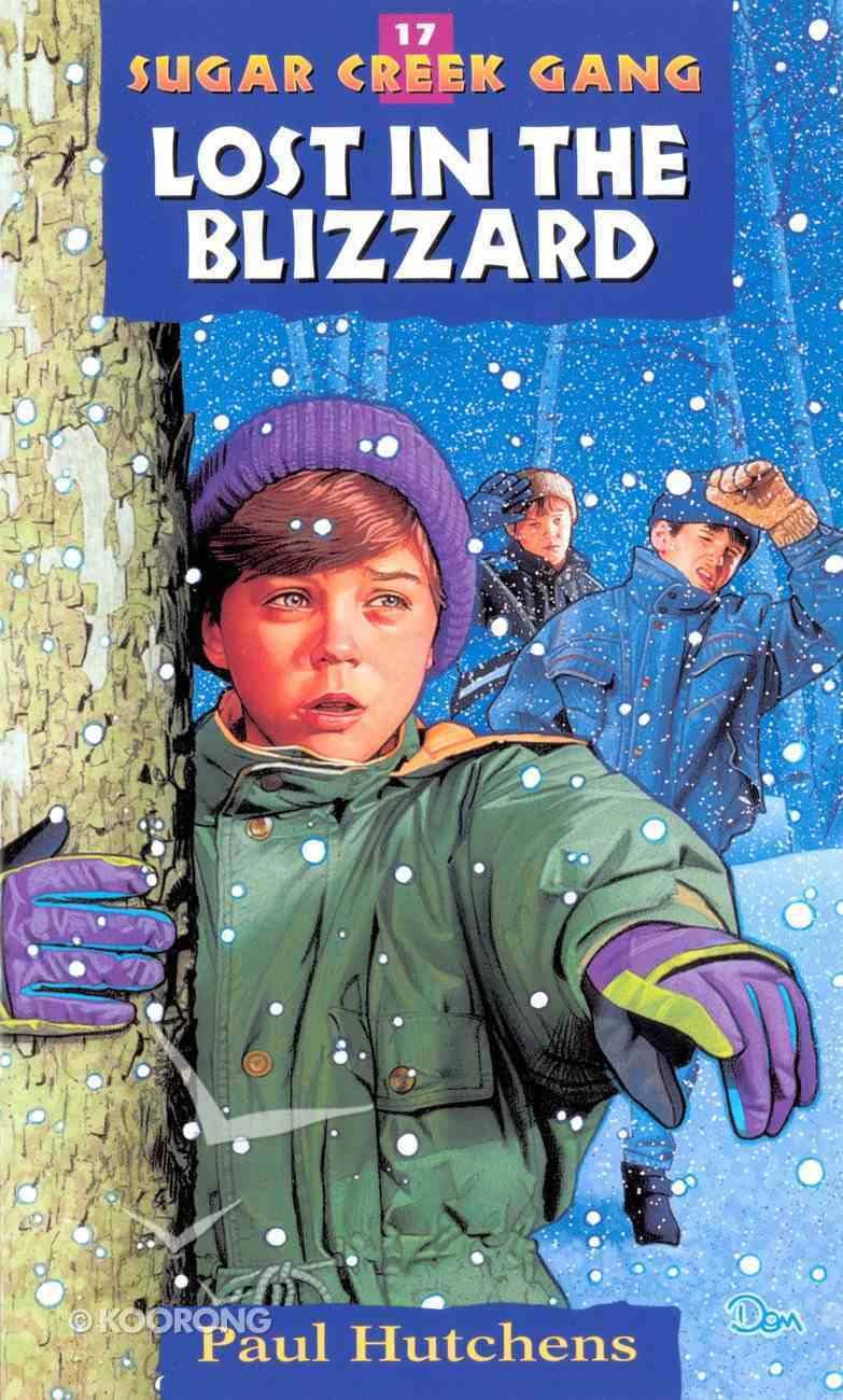 Lost in the Blizzard (#17 in Sugar Creek Gang Series) eBook