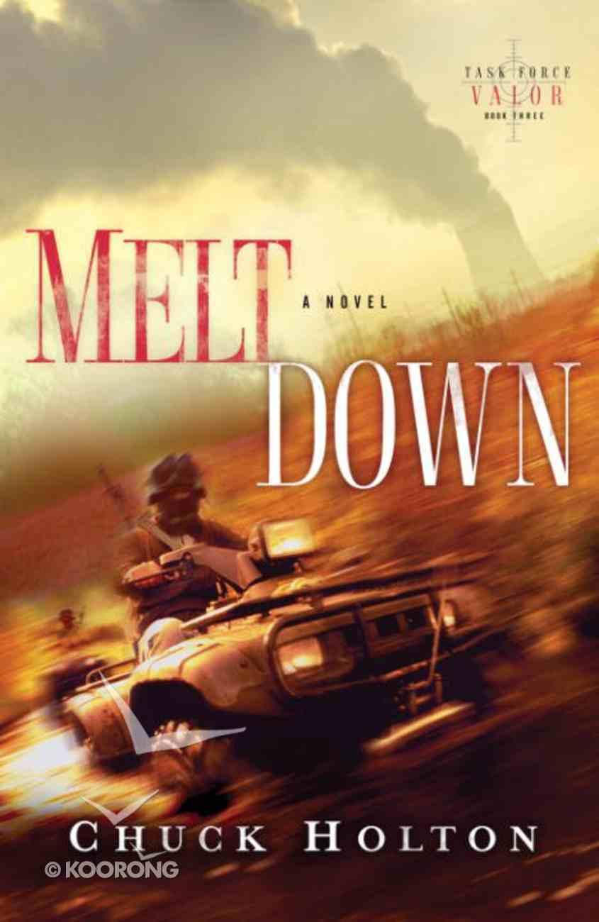 Meltdown (#03 in Task Force Valor Series) eBook