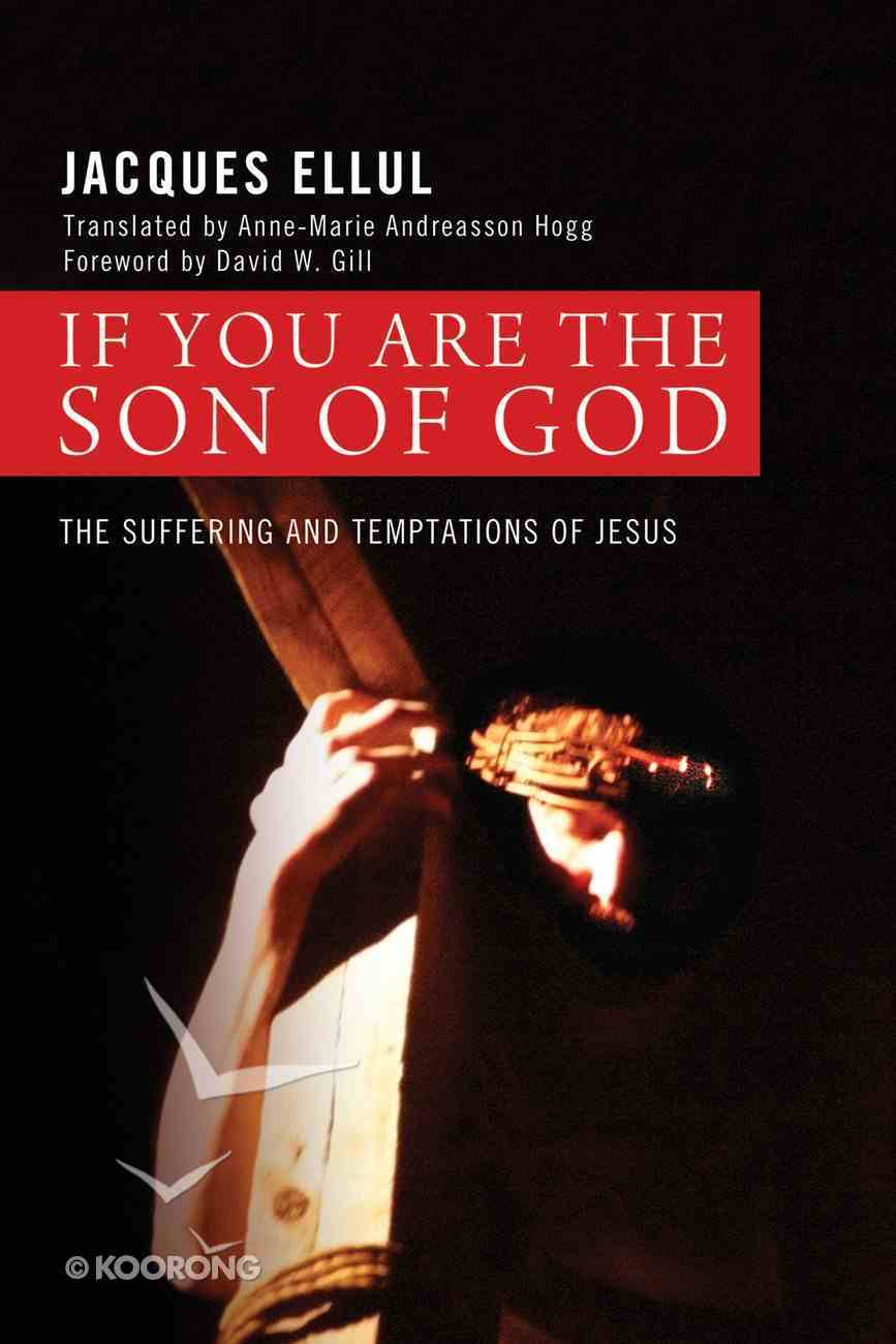 If You Are the Son of God eBook