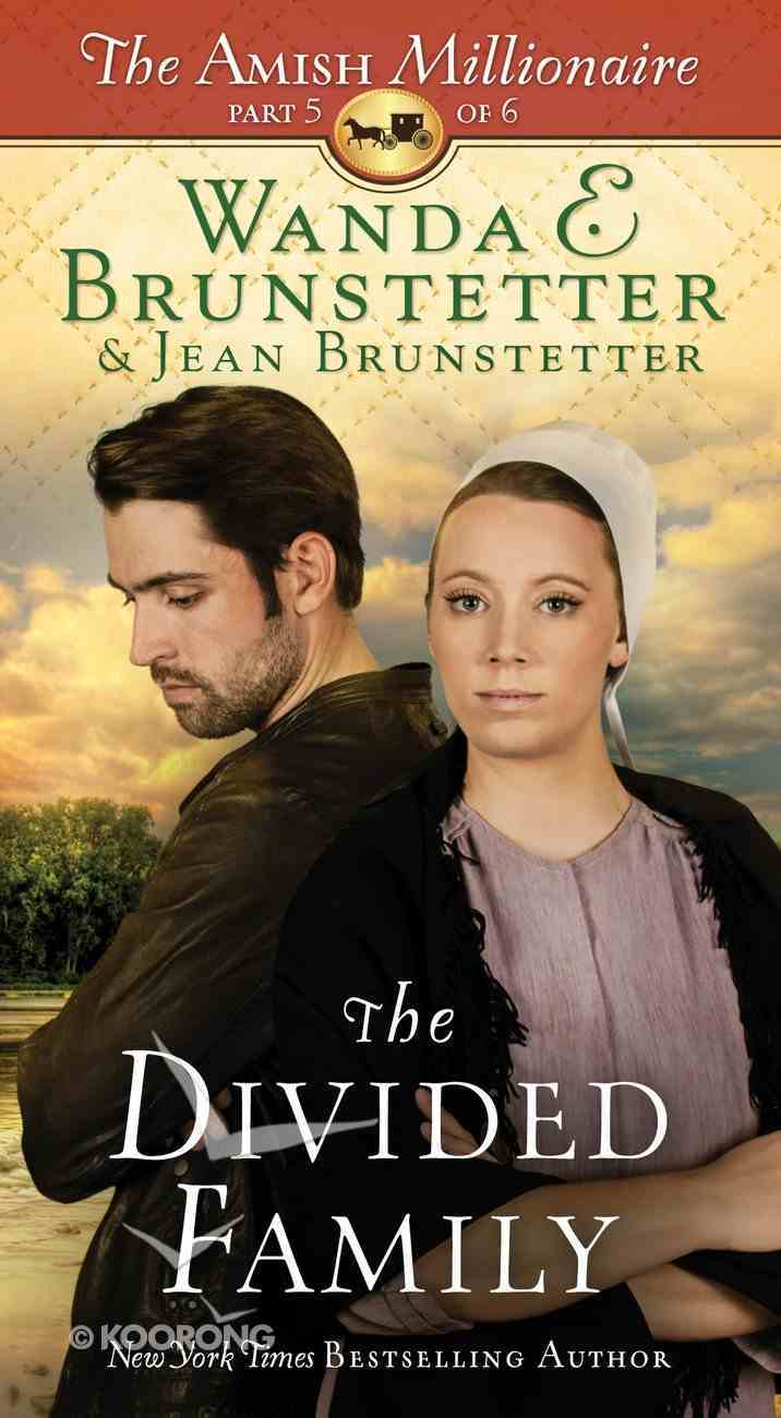 The Divided Family (#05 in The Amish Millionaire Series) eBook