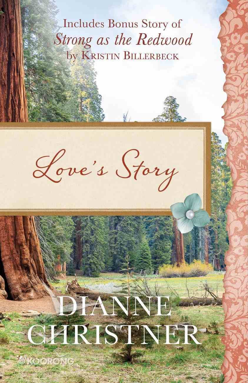 Love's Story eBook