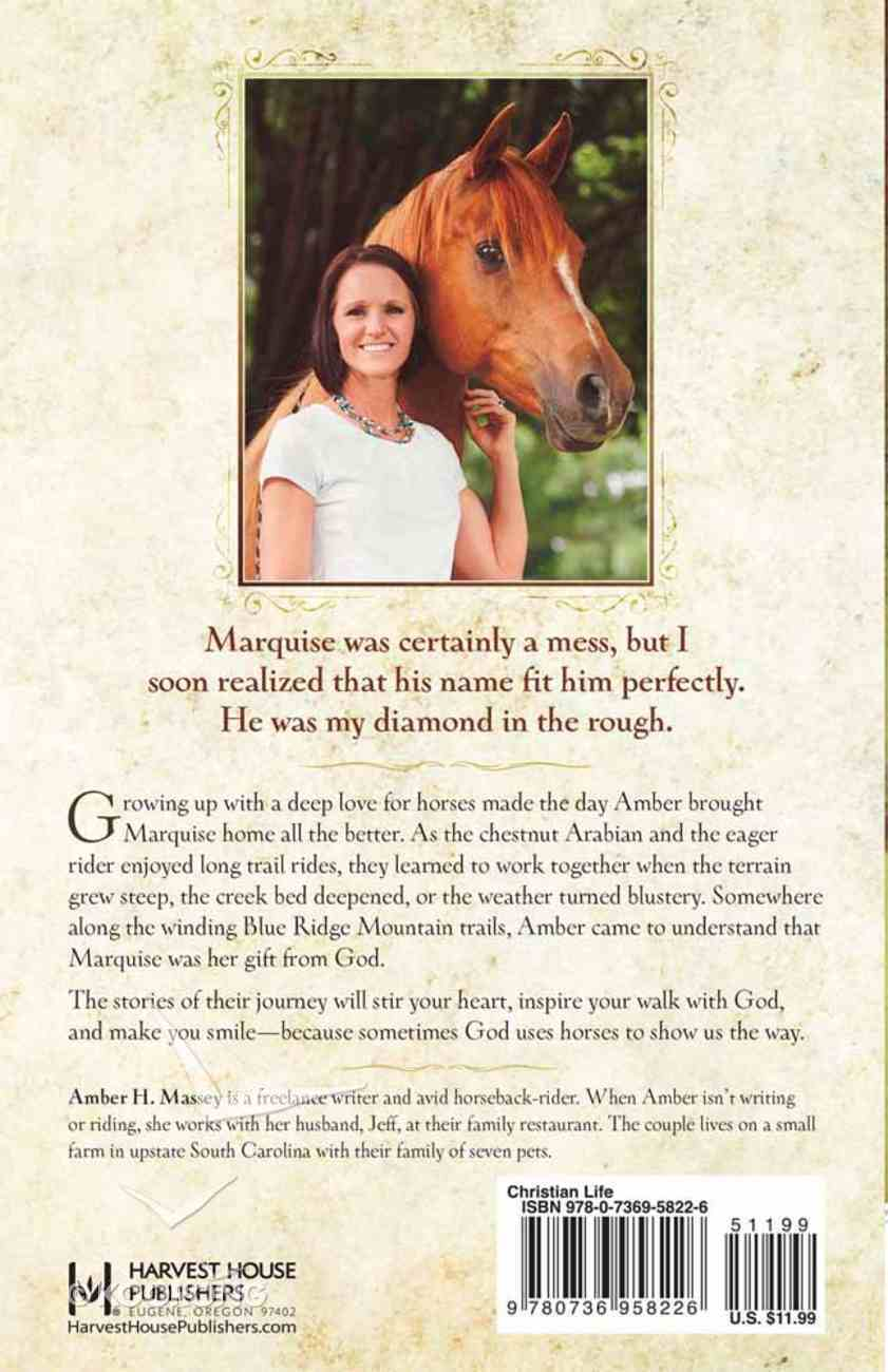 For the Love of Horses Paperback