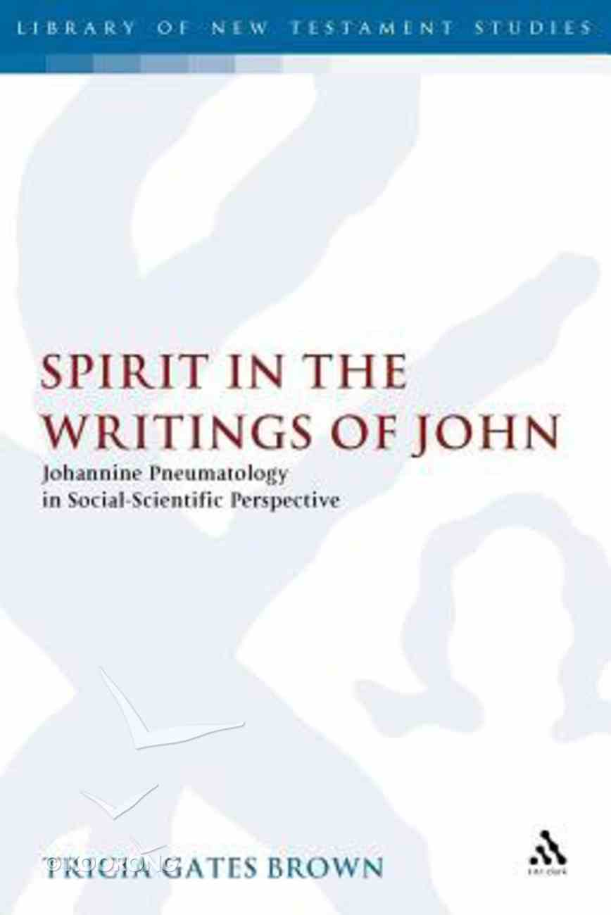 Spirit in the Writings of John (Journal For The Study Of The New Testament Supplement Series) Paperback