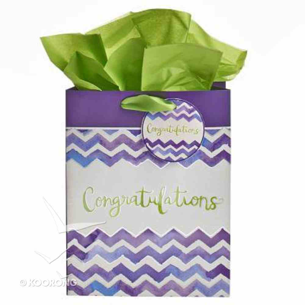 Gift Bag Medium: - I Know the Plans Chevron (Incl Tissue Paper & Gift Tag) Stationery
