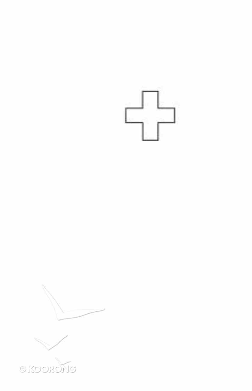 Acompanamiento Para El Cuidado Pastoral (Pastoral Care Companion) Paperback