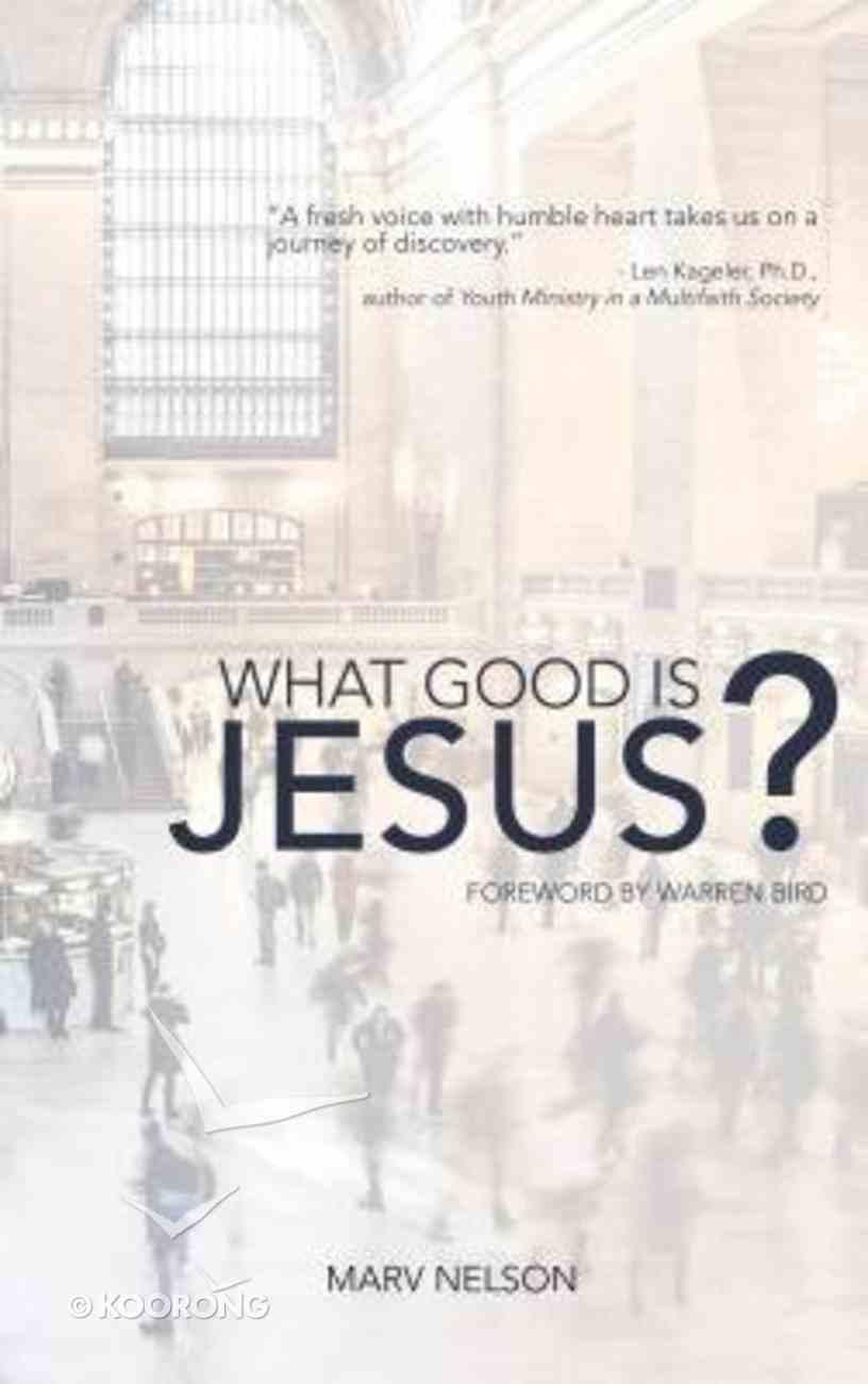 What Good is Jesus? Paperback
