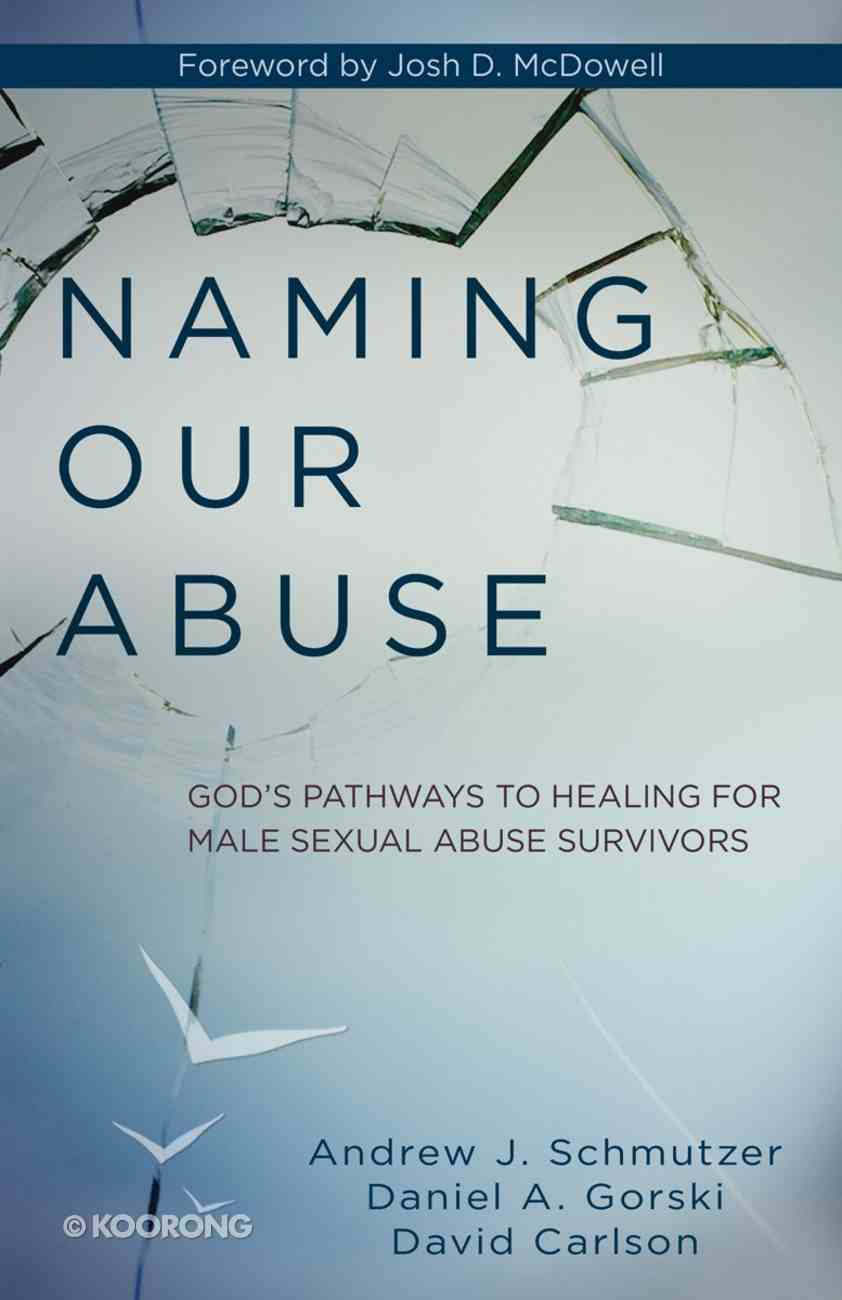 Naming Our Abuse Paperback
