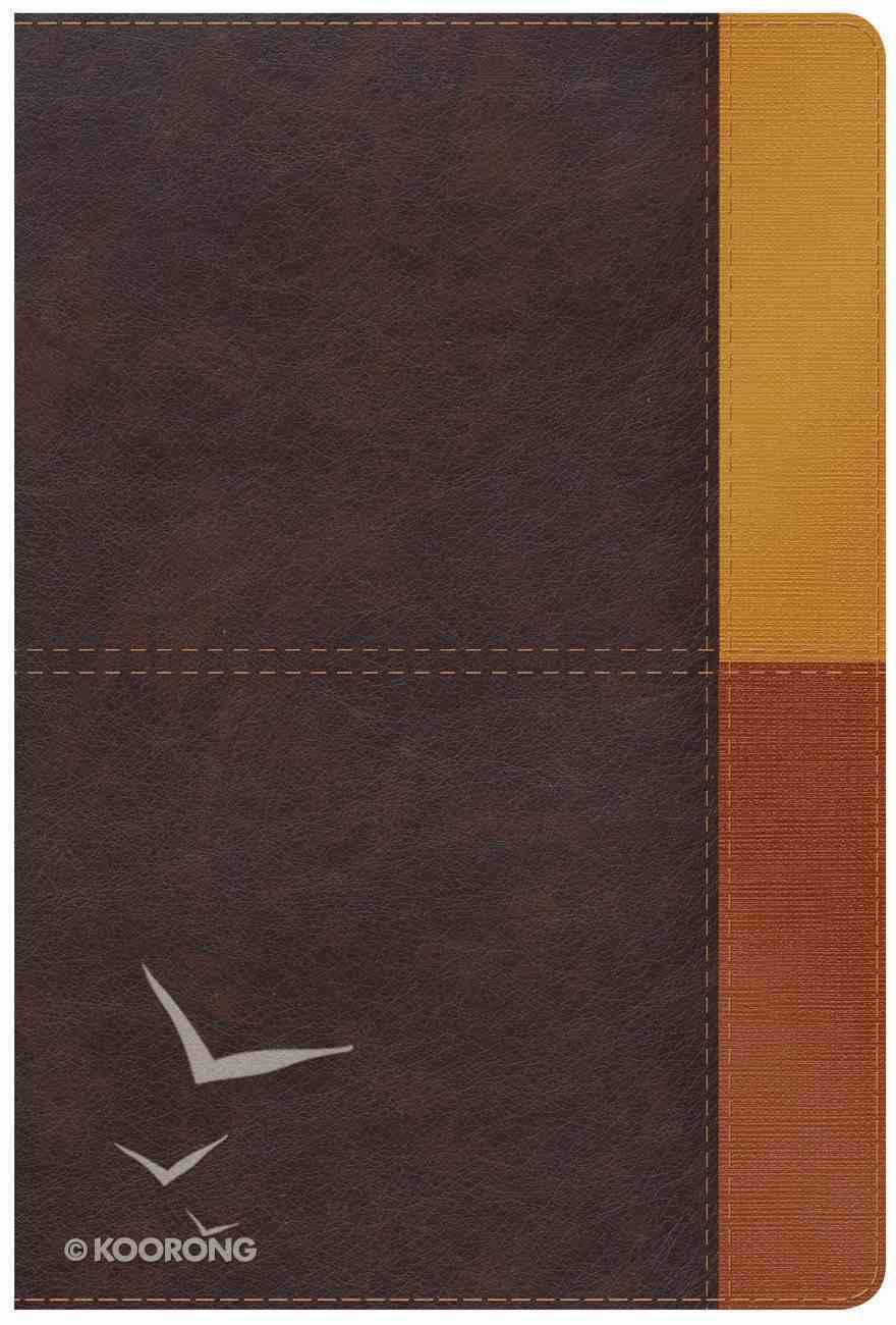 KJV Rainbow Study Bible Cocoa/Terra Cotta/Ochre Imitation Leather