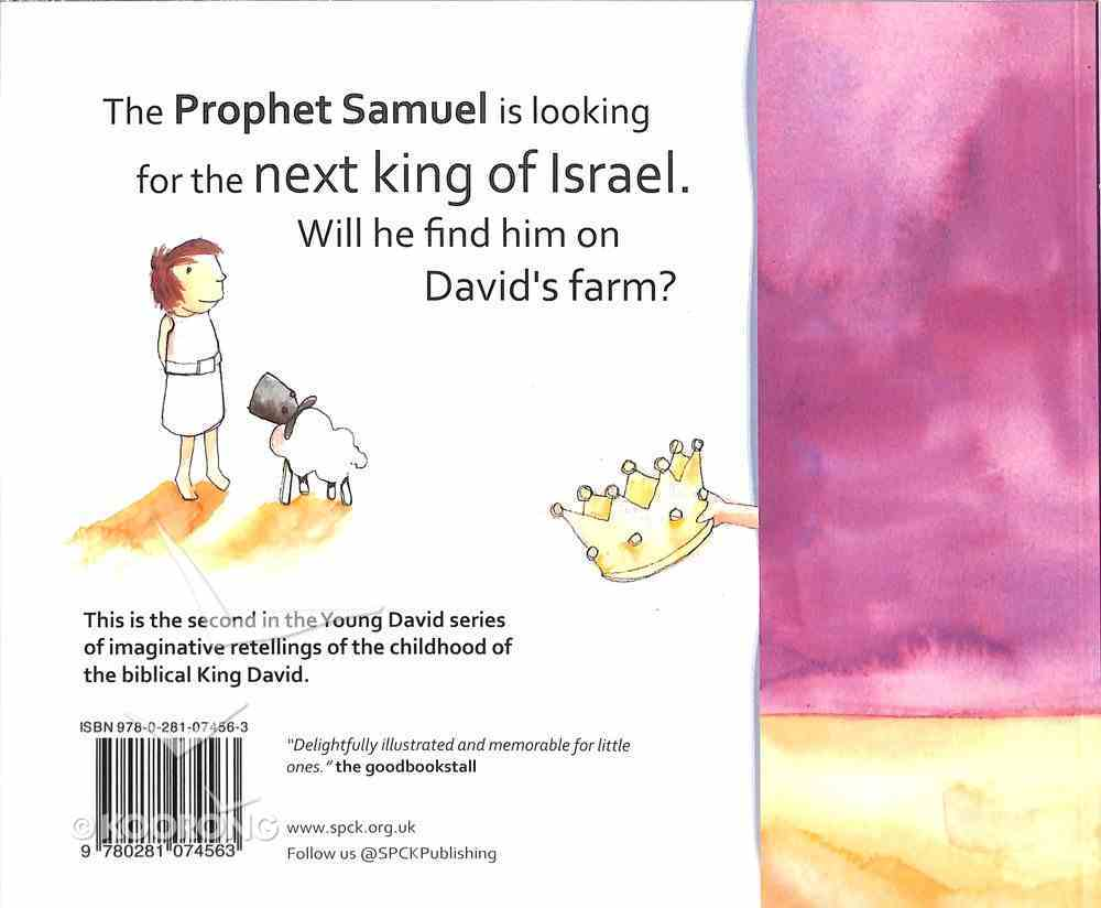 David and the Kingmaker (#02 in Young David Series) Paperback