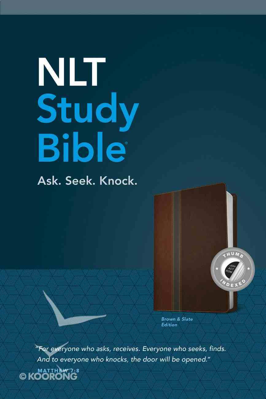 NLT Study Bible Indexed Brown Slate (Red Letter Edition) Imitation Leather