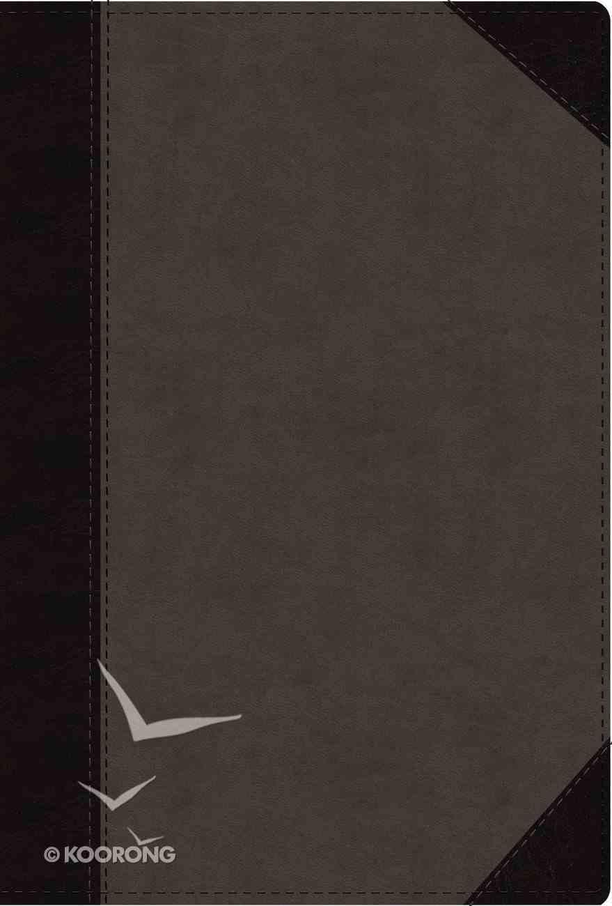 NIV Faithlife Study Bible Gray Black Indexed Imitation Leather