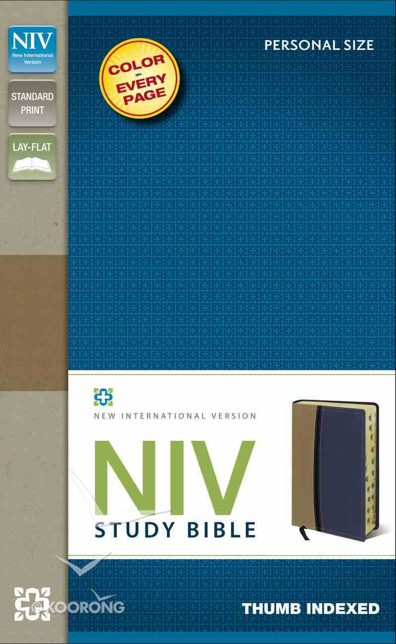 NIV Study Personal Size Indexed Bible Tan/Blue (Red Letter Edition) Premium Imitation Leather