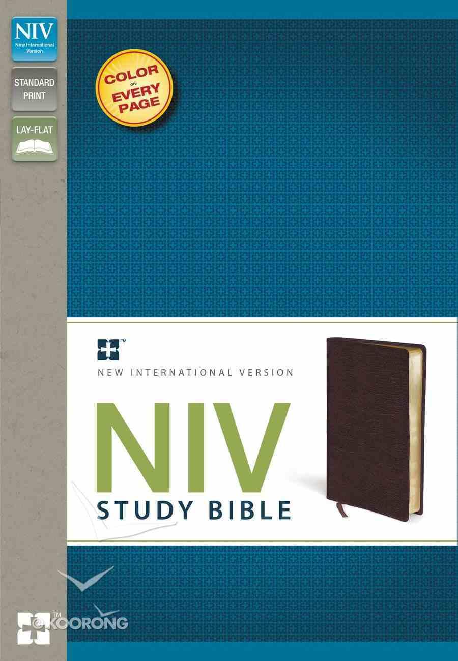 NIV Study Bible Regular Burgundy (Red Letter Edition) Bonded Leather