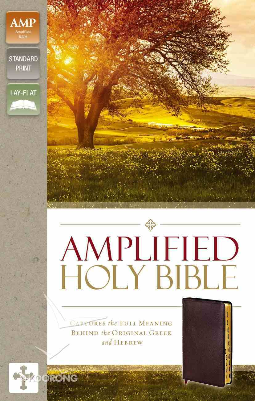 Amplified Holy Bible Indexed Burgundy (Black Letter Edition) Bonded Leather
