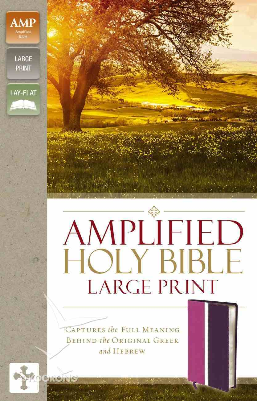 Amplified Holy Bible Large Print Dark Orchid/Deep Plum (Black Letter Edition) Premium Imitation Leather