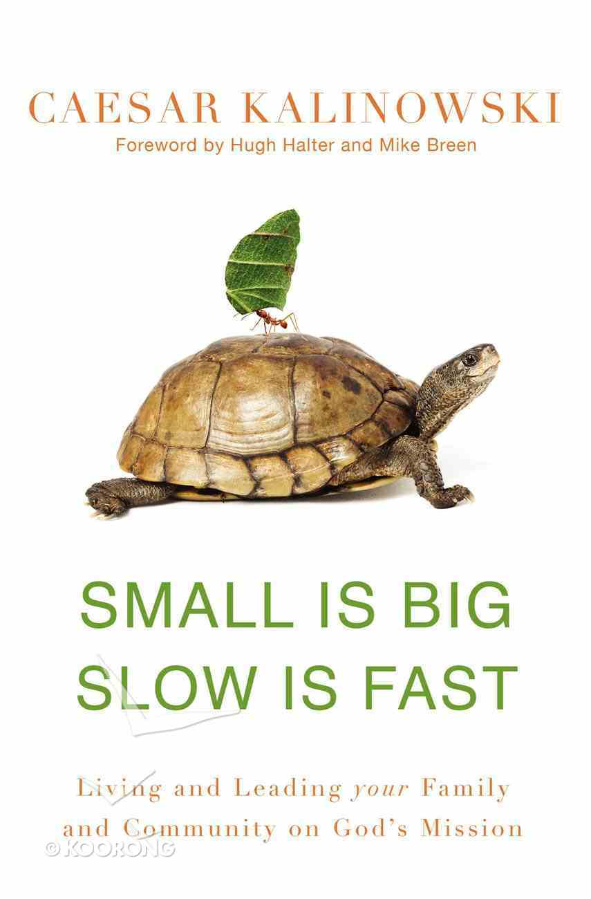 Small is Big, Slow is Fast Paperback