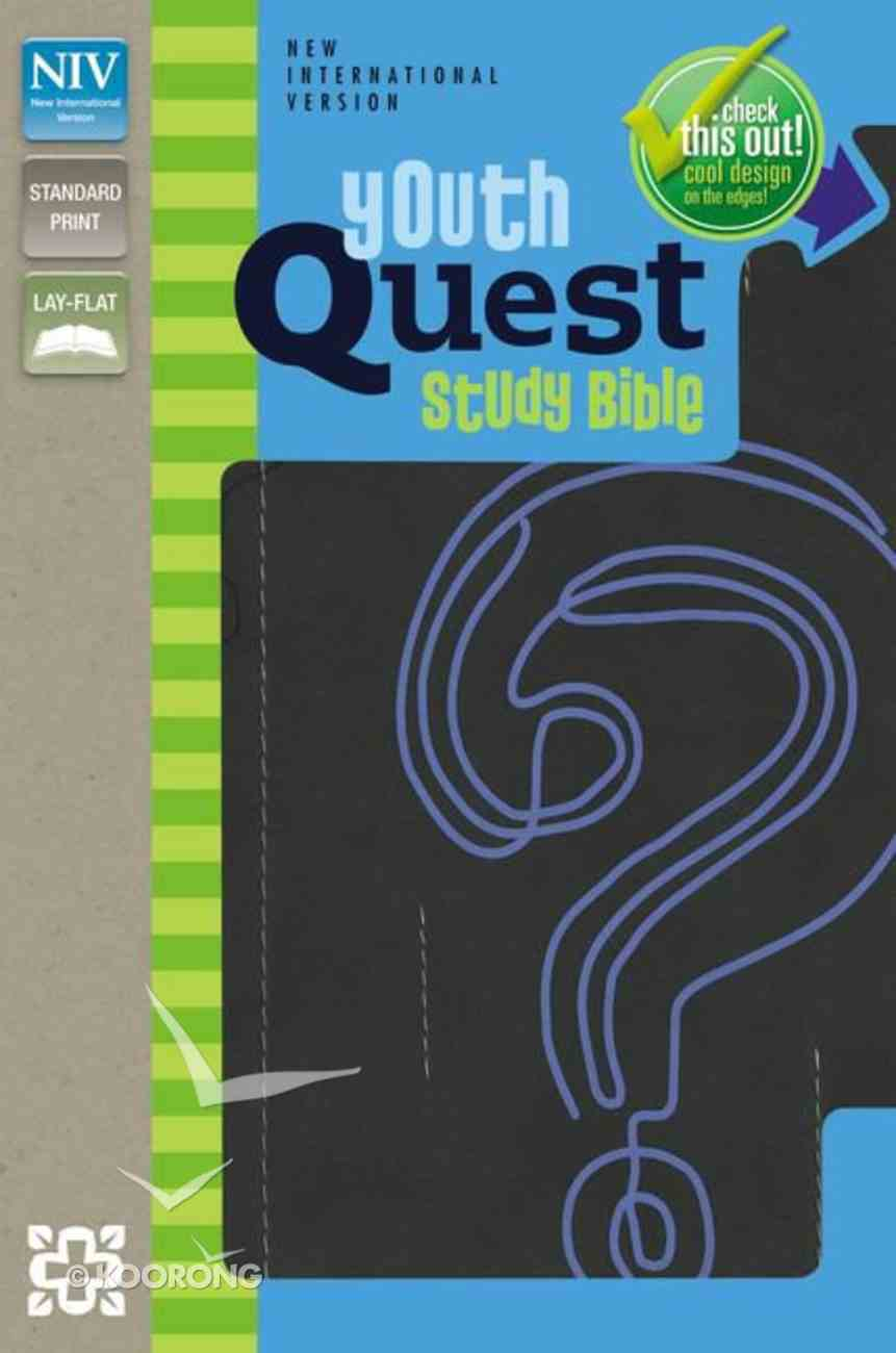 NIV Youth Quest Study Bible Graphite/Blue Imitation Leather