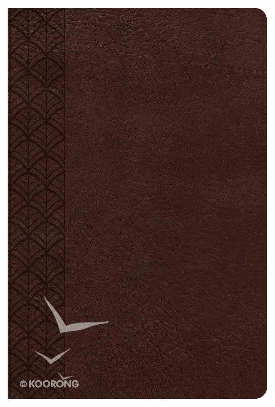 CSB Study Bible For Women Chocolate Imitation Leather