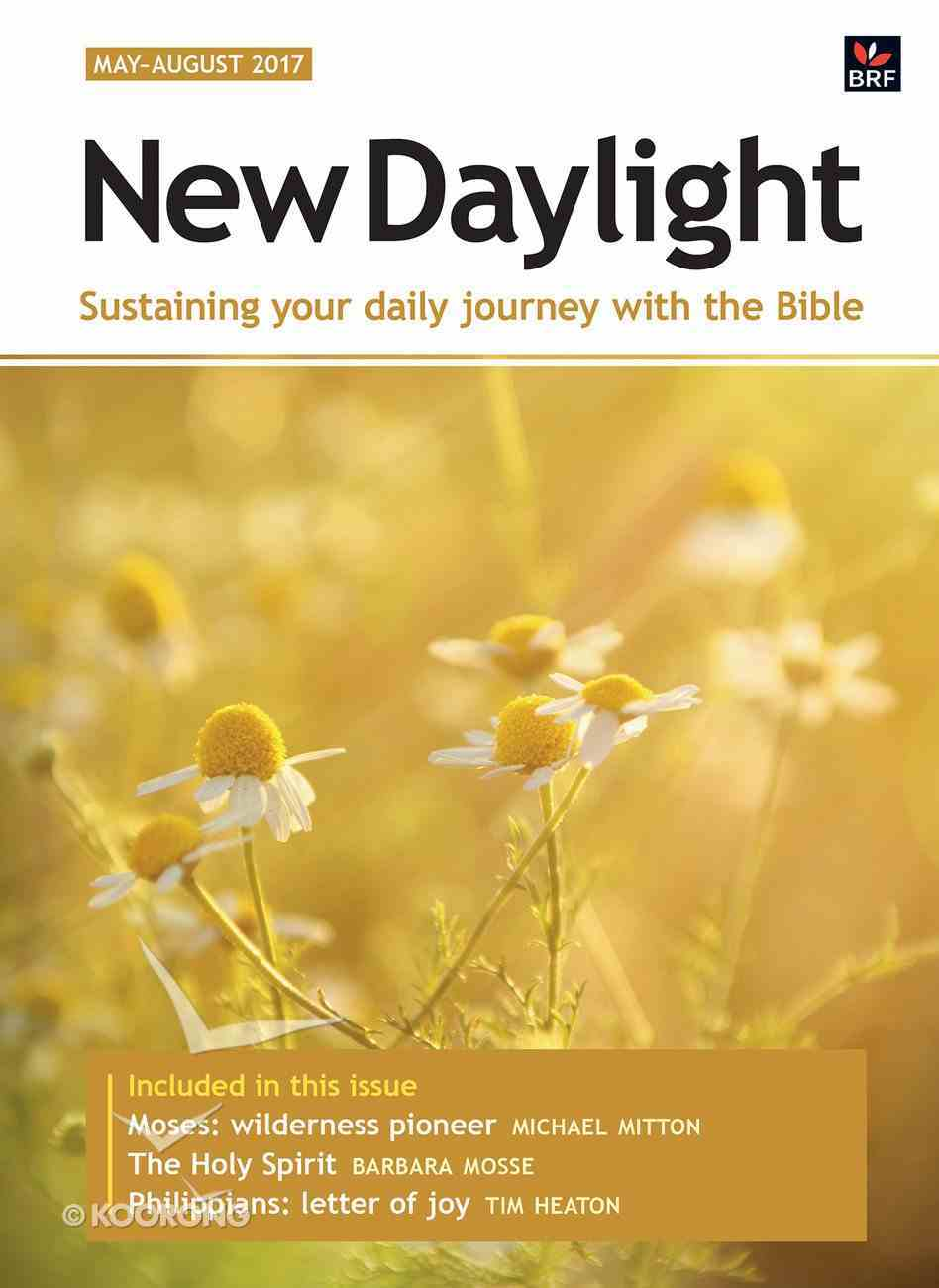 New Daylight Deluxe 2017 #02: May-Aug (Large Print) Paperback