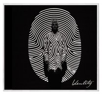 Album Image for Identity Deluxe Edition - DISC 1