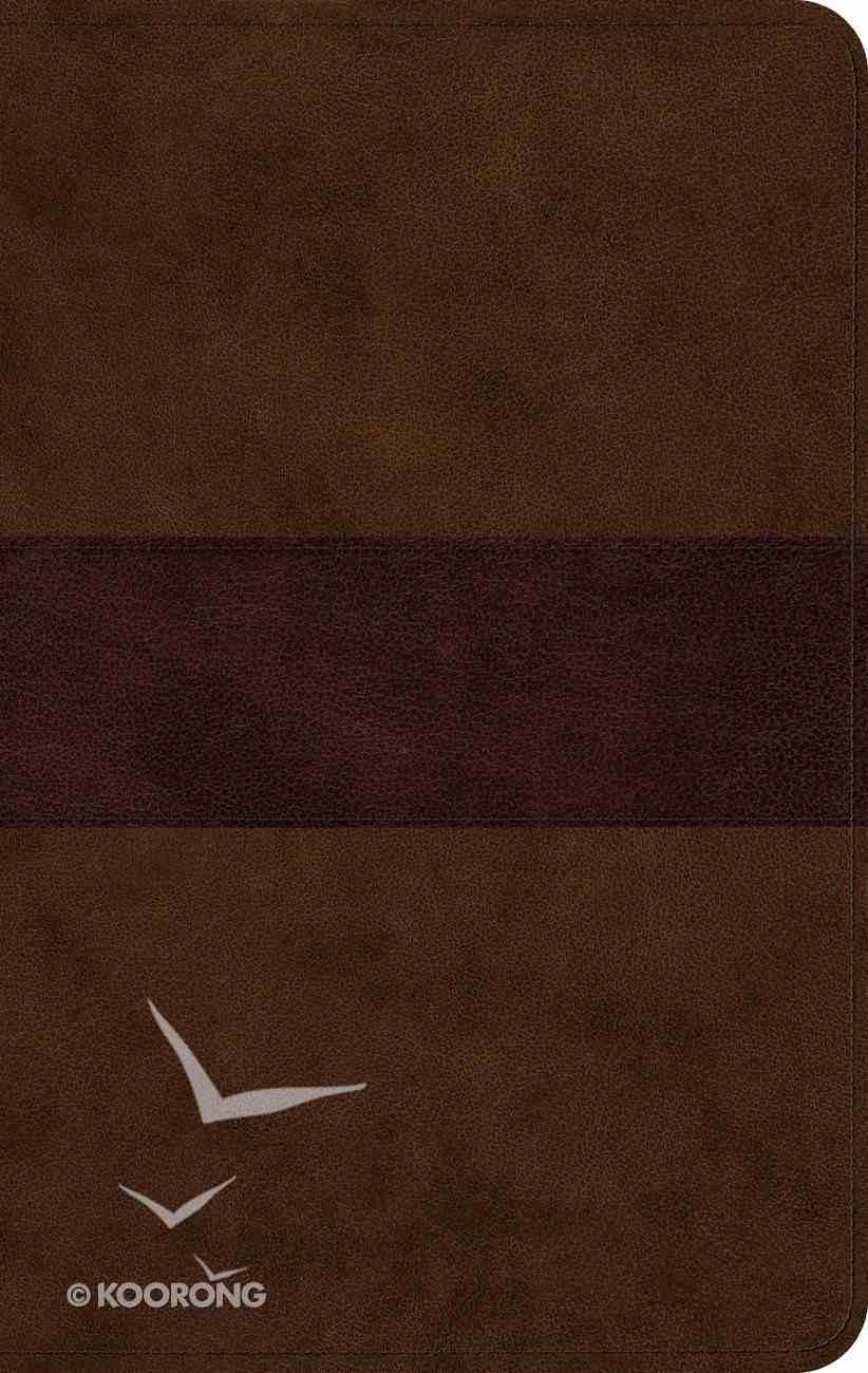 ESV Large Print Thinline Bible Chocolate/Plum Trail Design (Black Letter Edition) Imitation Leather