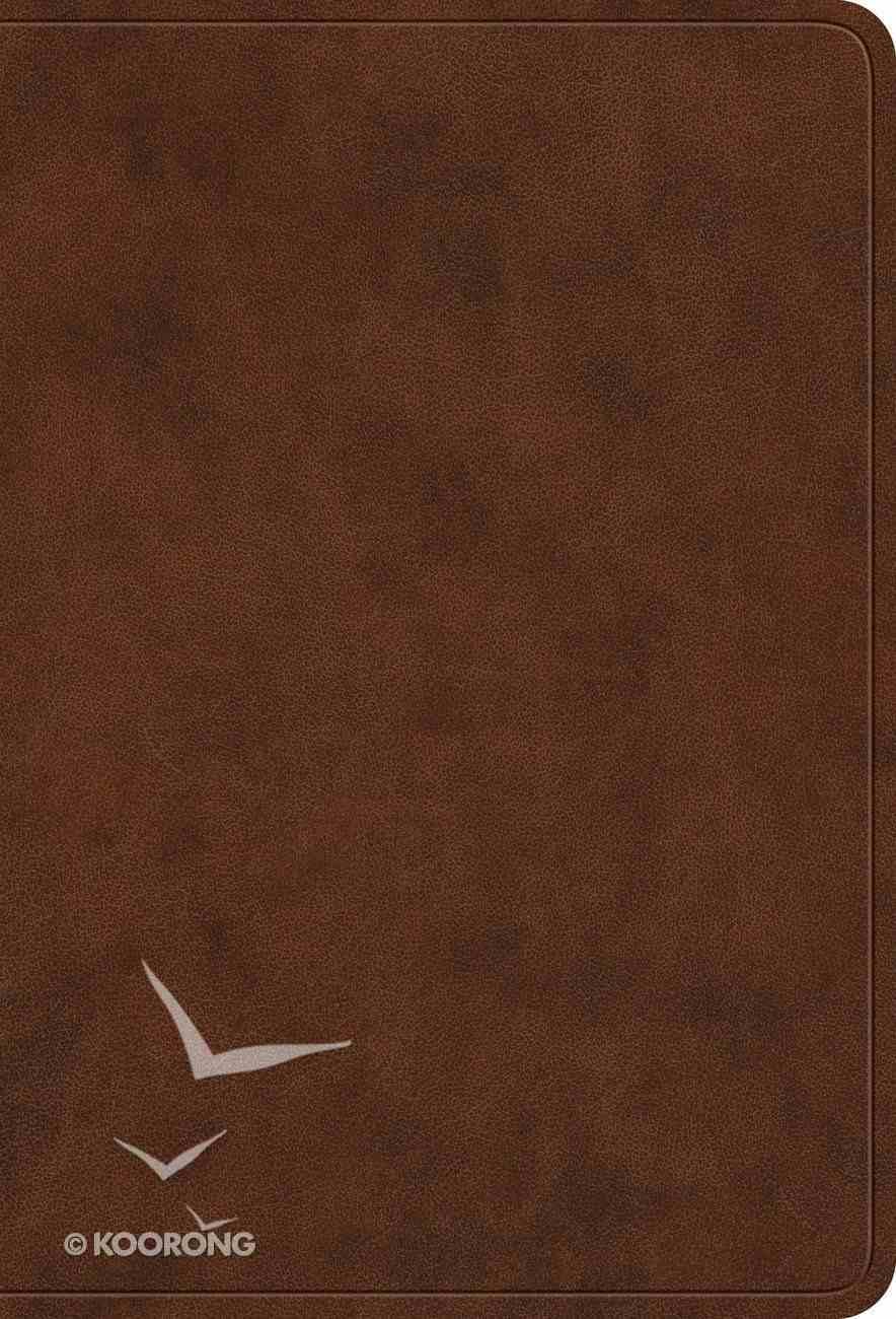 ESV Value Large Print Compact Bible Brown (Black Letter Edition) Imitation Leather