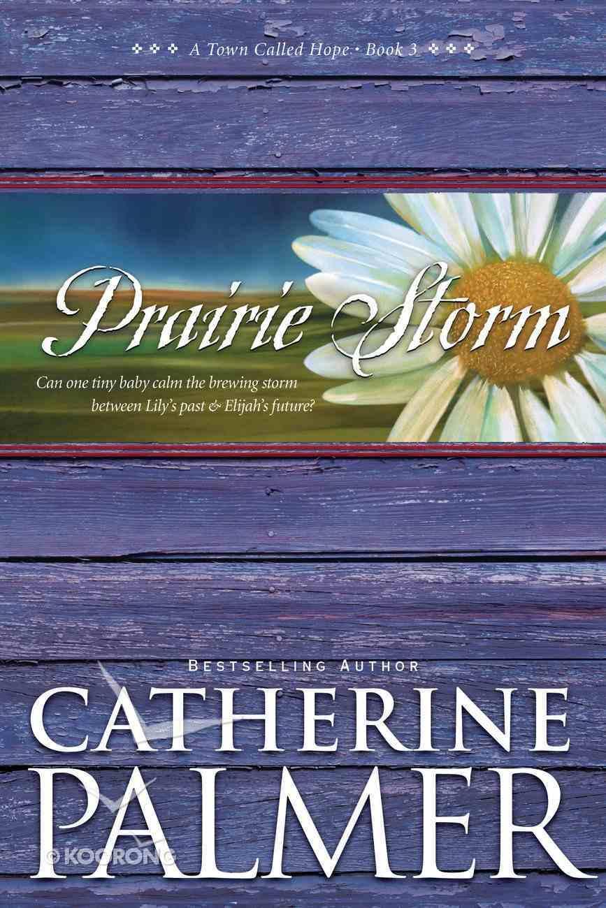 Prairie Storm (#03 in Town Called Hope Series) eBook