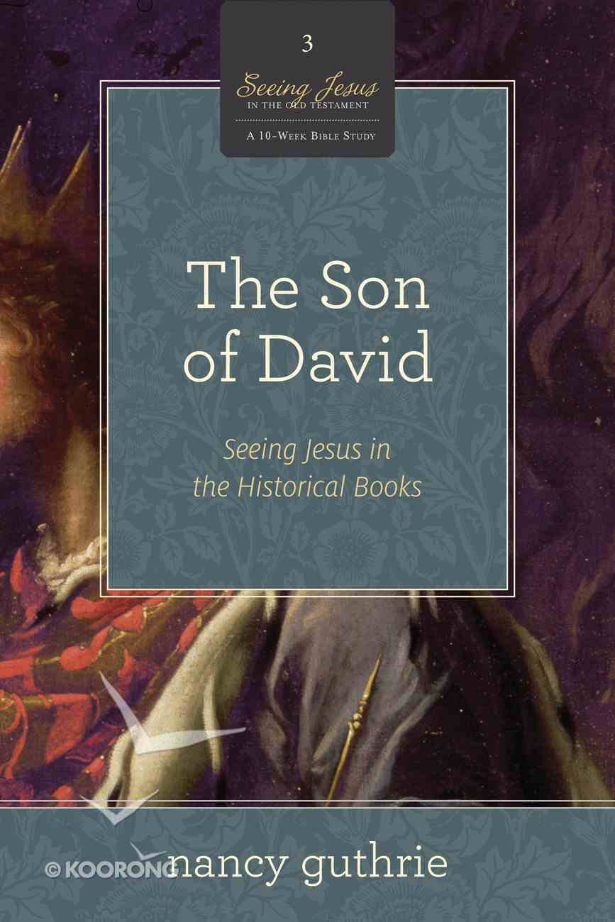 The Son of David (#03 in Seeing Jesus In The Old Testament Series) eBook
