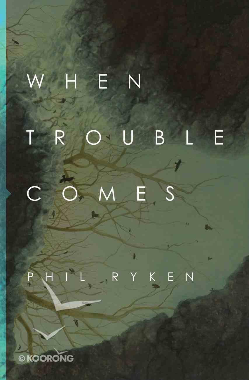When Trouble Comes eBook